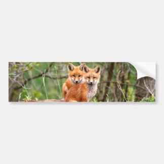 Photo des kits adorables de renard rouge se autocollant de voiture