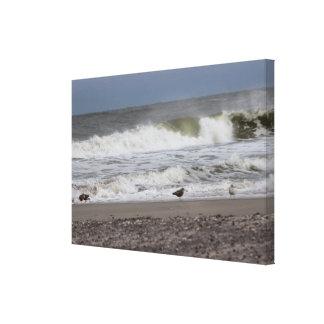 Photo d'océan toiles