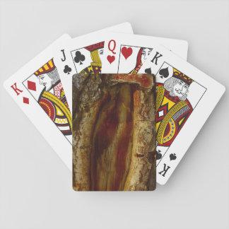 Photo d'une cavité dans un arbre jeux de cartes