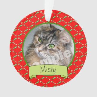 Photo et nom de chat d'Adoranle Kitty