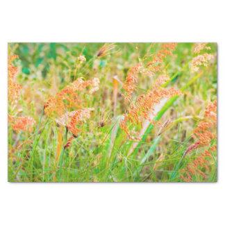 Photo florale de scène d'après-midi papier mousseline
