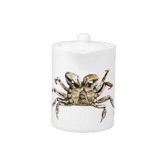 Photo foncée de crabe