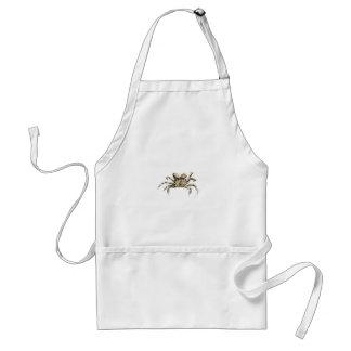 Photo foncée de crabe tablier