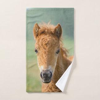 Photo frontale mignonne de tête de cheval de