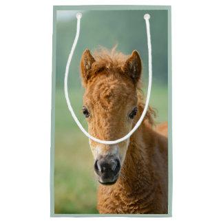Photo frontale mignonne de tête de cheval de petit sac cadeau