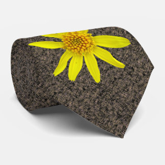 Photo jaune botanique de fleur sauvage cravate