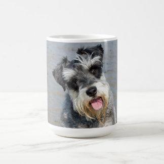 Photo mignonne de chien miniature de Schnauzer à l Tasse À Café