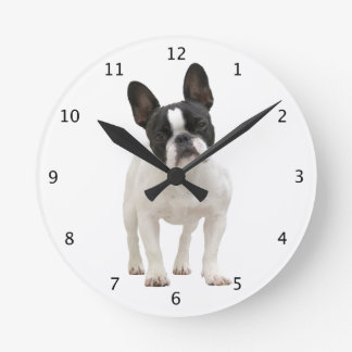 Photo mignonne de chiot de chien de bouledogue fra horloge ronde