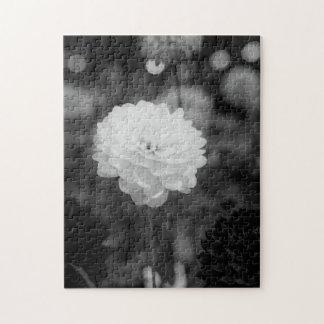 Photo noire et blanche de dahlia puzzle