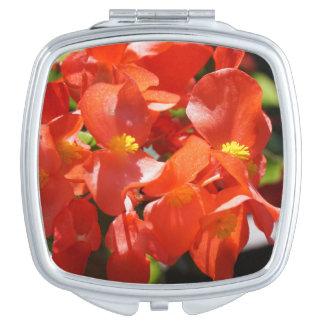 """Photo rouge de fleur de """"beaux bégonias"""" miroirs à maquillage"""