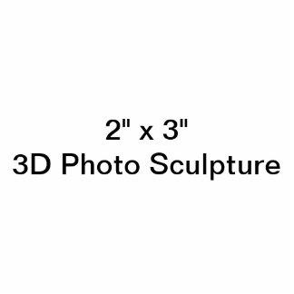 """Photo Sculpture 2"""" personnalisé x 3"""" sculpture en photo"""