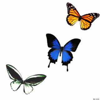 Photo Sculpture Silhouette de photo du motif de papillon 3D