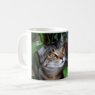 Photo votre tasse de café de chat d'animal