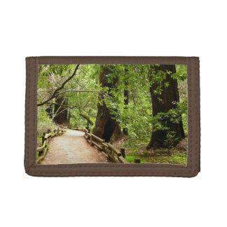 Photographie de nature du chemin II en bois de