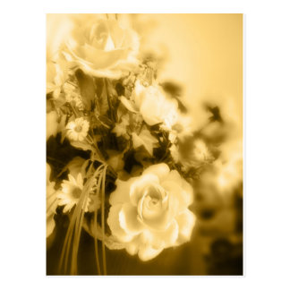Photographie de roses de sépia carte postale