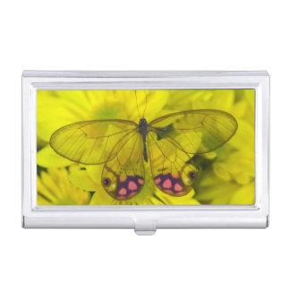 Photographie de Sammamish Washington de papillon Boîtier Pour Cartes De Visite