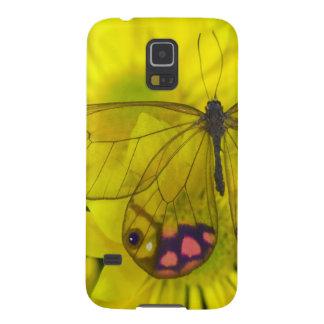 Photographie de Sammamish Washington de papillon Coques Pour Galaxy S5
