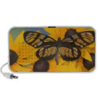 Photographie de Sammamish Washington du papillon 2 Haut-parleurs iPhone