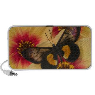 Photographie de Sammamish Washington du papillon 3 Haut-parleurs Portables