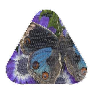 Photographie de Sammamish Washington du papillon 9 Haut-parleur Bluetooth