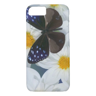 Photographie de Sammamish Washington du papillon Coque iPhone 8/7