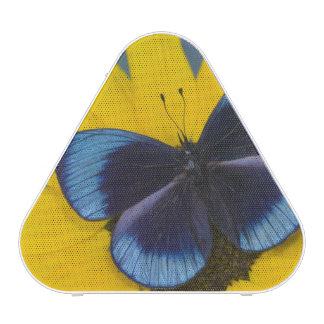 Photographie de Sammamish Washington du papillon Haut-parleur Bluetooth