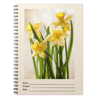 Photographie florale :  Jonquilles jaunes de Carnets