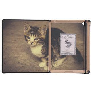 Photographie mignonne de chaton, animal de bébé coque iPad