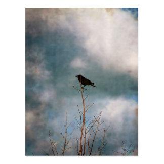 Photographie vintage d'une corneille sur un arbre carte postale