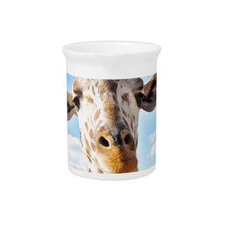 Pichet Girafe idiote
