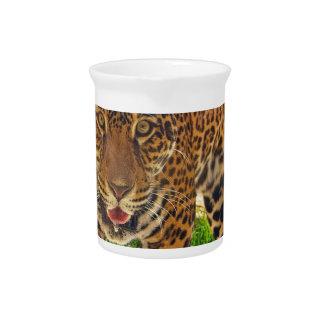 Pichet Jaguar