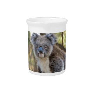 Pichet Ours de koala gris et blanc