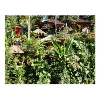 Pièce avec une vue, Ubud, Bali Indonésie Carte Postale