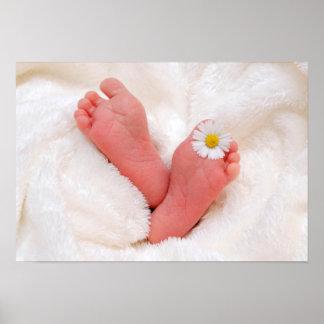 Pieds de bébé avec la marguerite posters