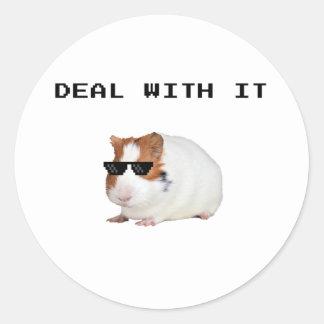 Pig de Guinée - Funny Sticker