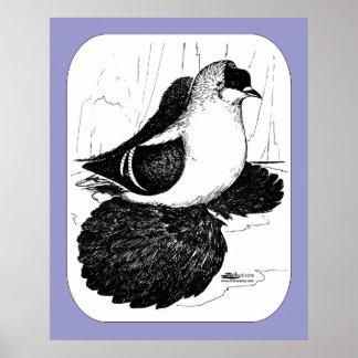 Pigeon 1978 d'hirondelle de Saxon Affiches