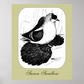 Pigeon 1978 d'hirondelle de Saxon Poster