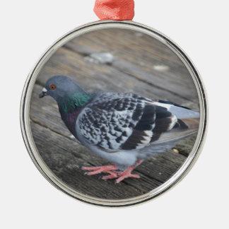 Pigeon Ornement Rond Argenté