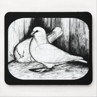 Pigeons géants d'avorton tapis de souris