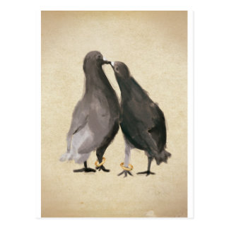 Pigeons romantiques carte postale