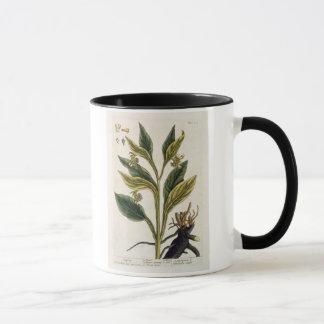 Piments rouges (gravure de couleur) mug
