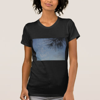 Pin à feuillage persistant contre un ciel bleu de  t-shirts