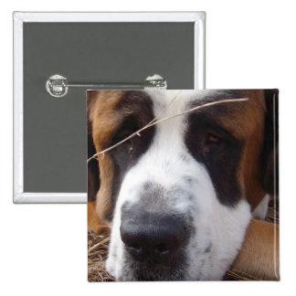 Pin de carré de chien de St Bernard Pin's