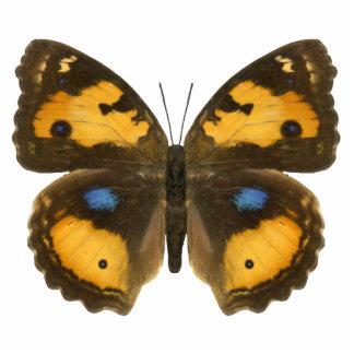 Pin jaune de papillon de pensée badge photo sculpture