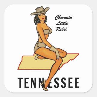 Pin-up du Tennessee Sticker Carré