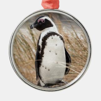 Pingouin africain sur la plage ornement rond argenté