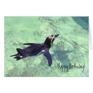 Pingouin Carte De Vœux