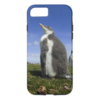 Pingouin de Gentoo, Pygoscelis Papouasie, avec Coque iPhone 8/7