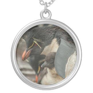 Pingouin et poussin de Rockhopper Pendentif Rond