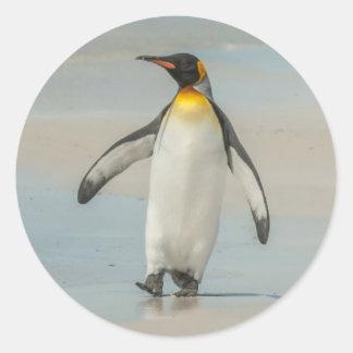 Pingouin marchant sur la plage sticker rond